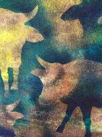 Obraz - Zlaté kopýtko Jana Petříková