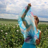 Hedvábný šátek - Lexikon nebes